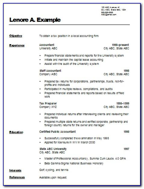 Professional Cv Template 2017