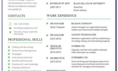 Professional Cv Template Physician