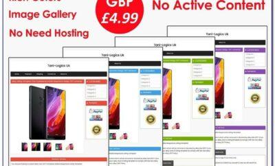 Professional Ebay Store Templates