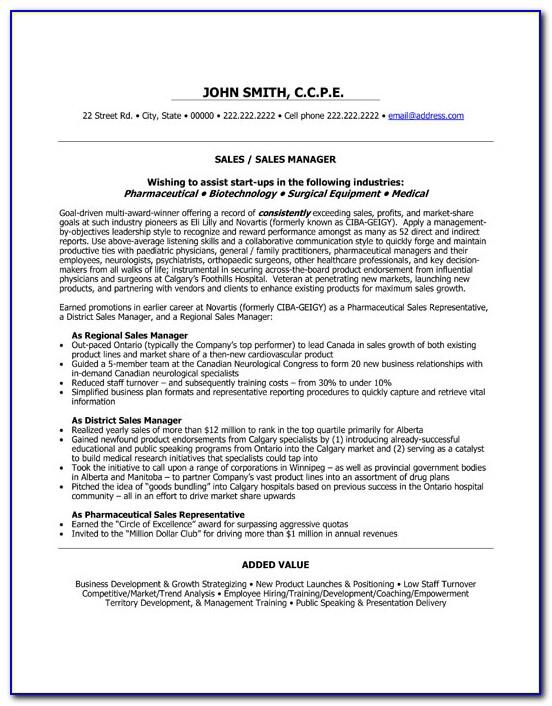 Professional Resume Format For Sales And Marketing