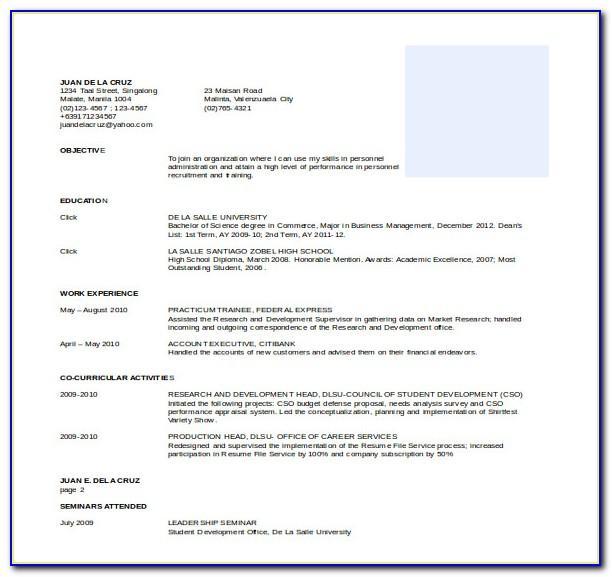 Professional Resume Format Pdf Free Download