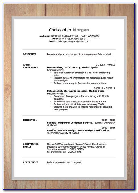Professional Resume Format Word Doc