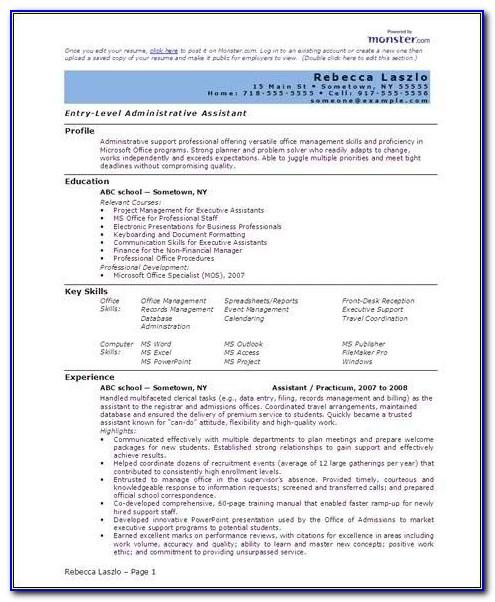 Professional Resume Format Word Document