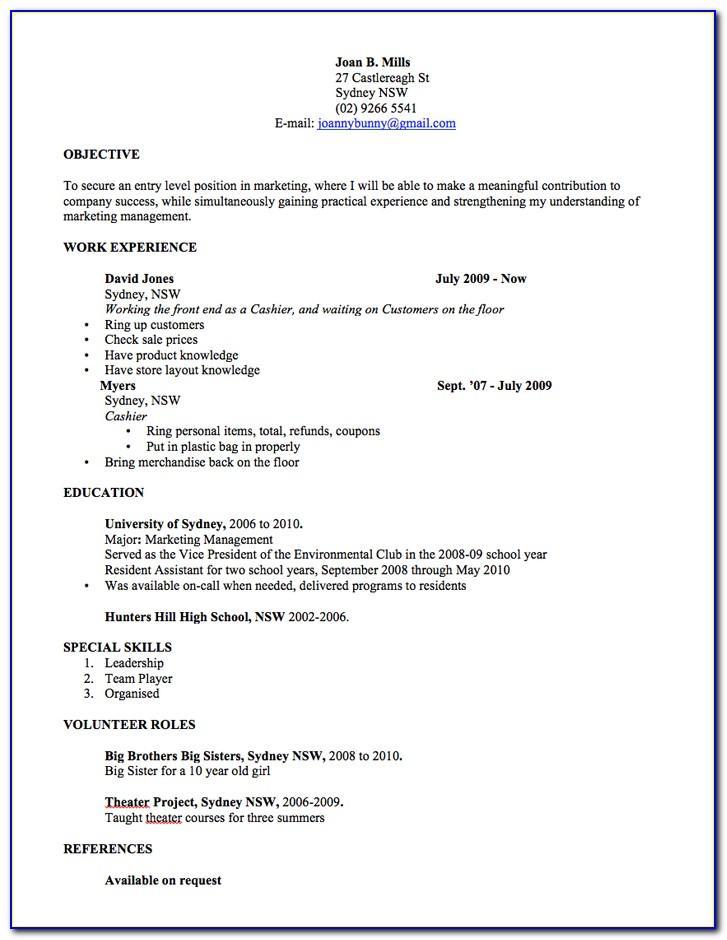 Professional Resume Layout 2017