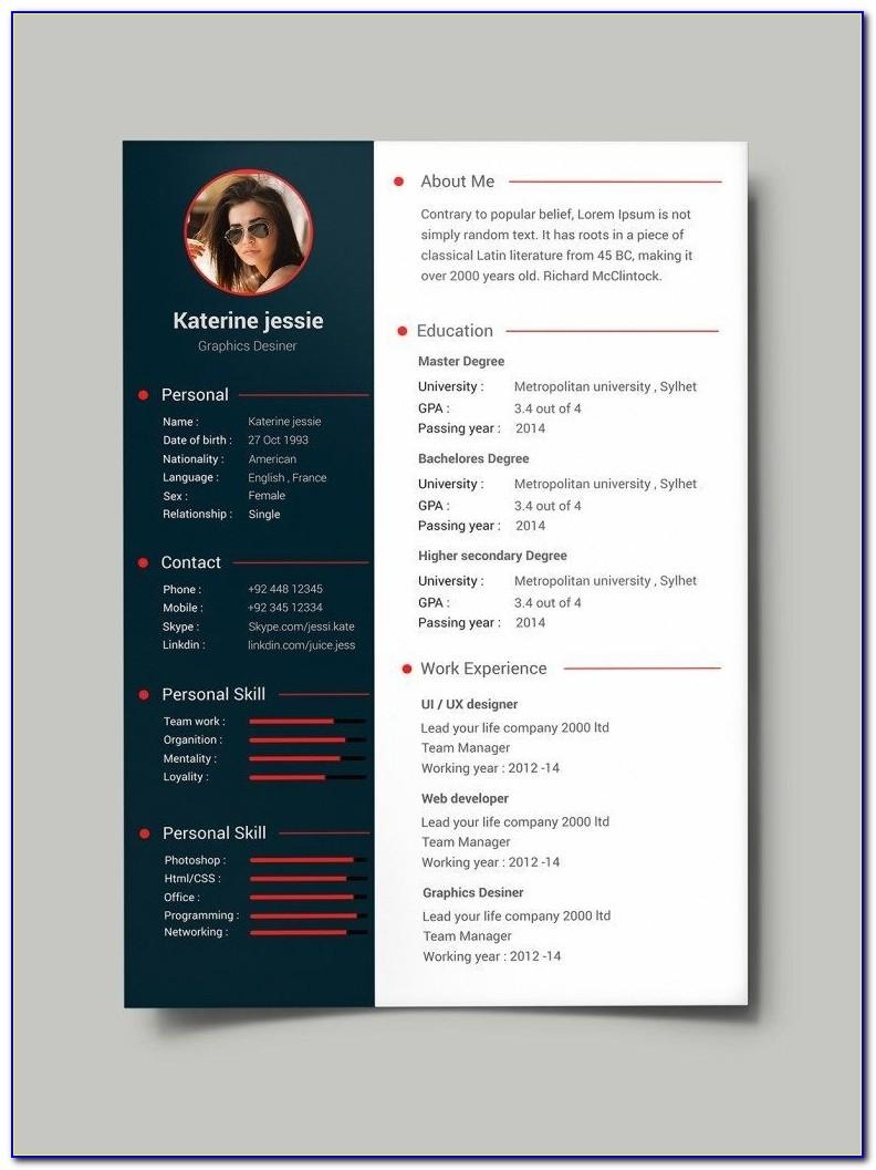 Professional Resume Template Best