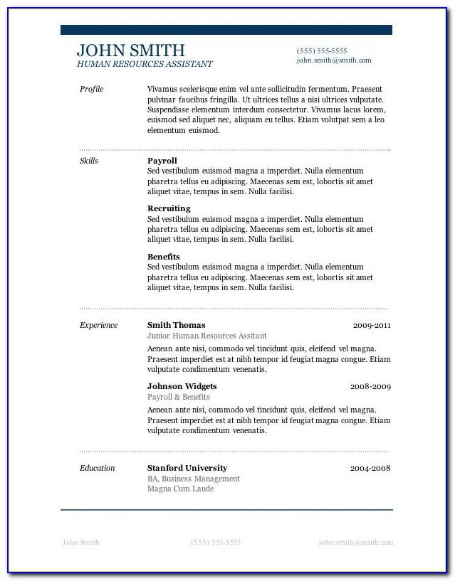 Professional Resume Template For Microsoft Word