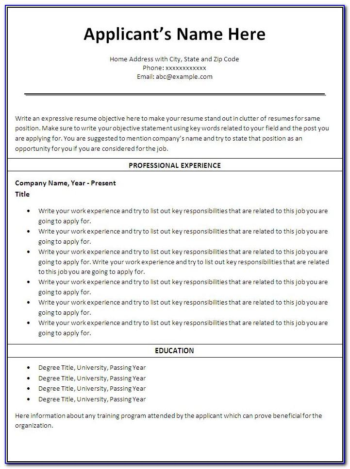 Professional Resume Template Indesign Free