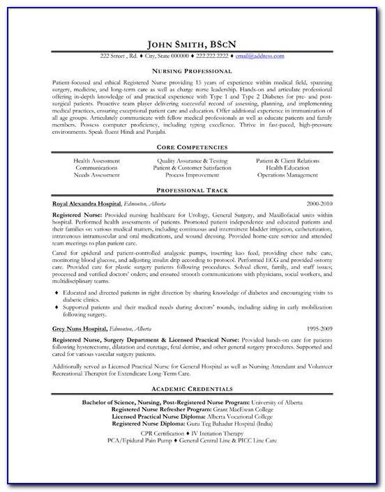 Professional Resume Template Microsoft Word 2003