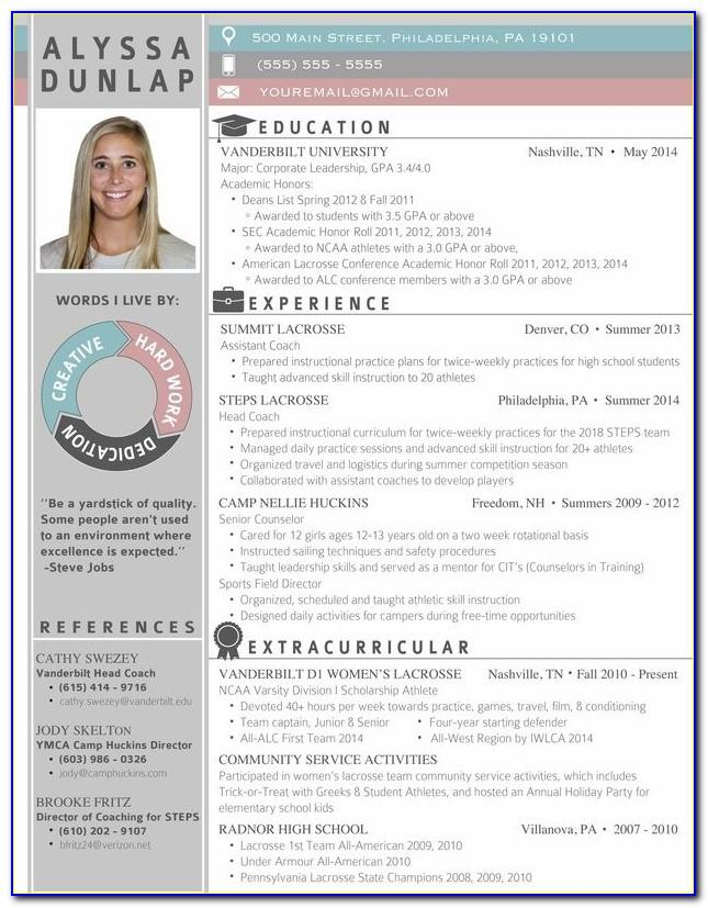Professional Resume Template With Picture