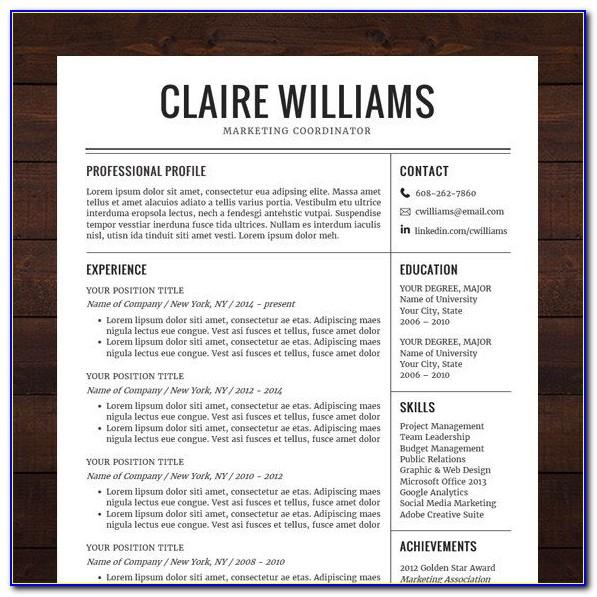 Professional Resume Template Word Free Download