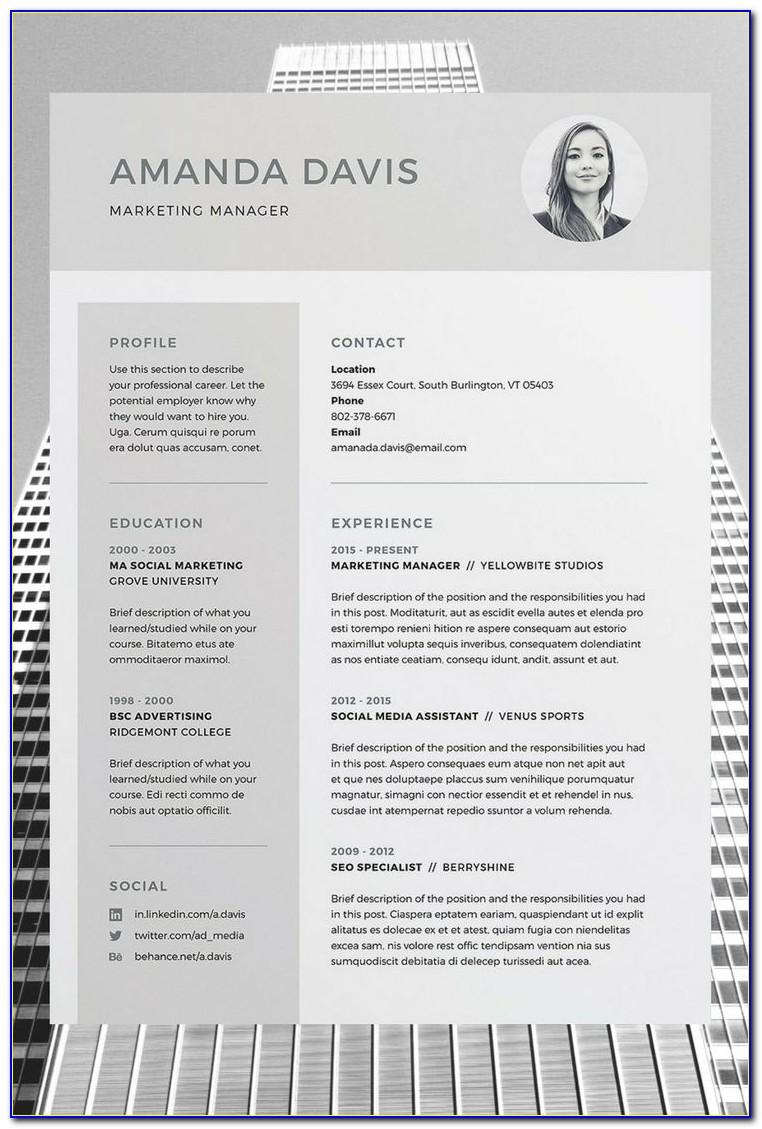 Professional Resume Template Word Free