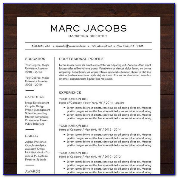 Professional Resume Templates 2015