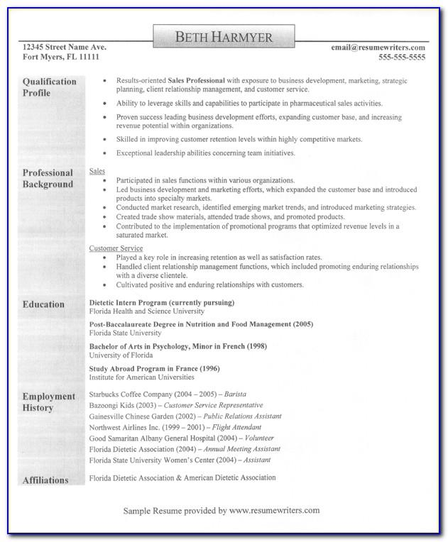 Professional Sales Cv Template