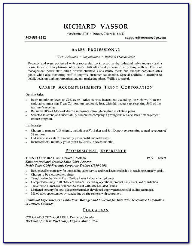 Professional Sales Resume Format