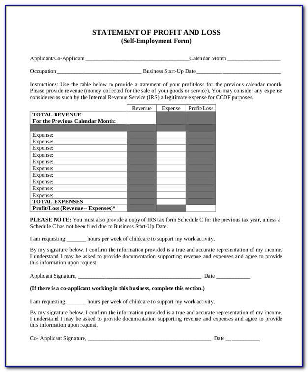 Profit And Loss Account And Balance Sheet Sample