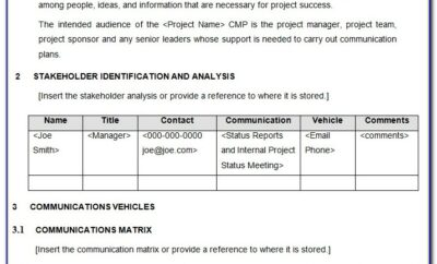 Project Management Communication Plan Example Pdf