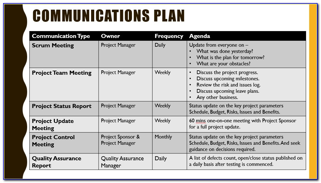 Project Management Communication Strategy Example
