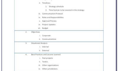 Project Management Document Template