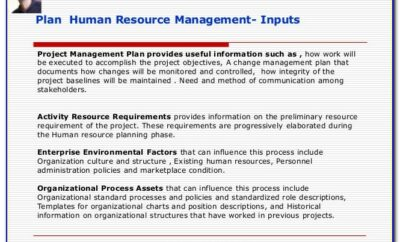 Project Management Human Resource Plan Example