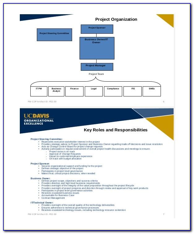 Project Management Metrics Examples