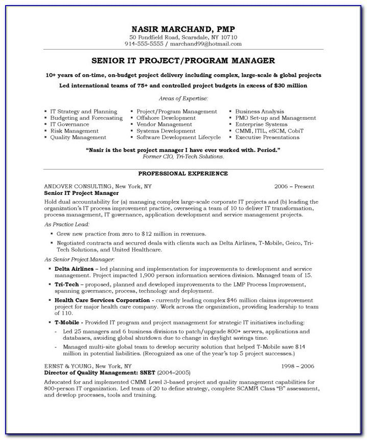 Project Manager Resume Examples Pdf