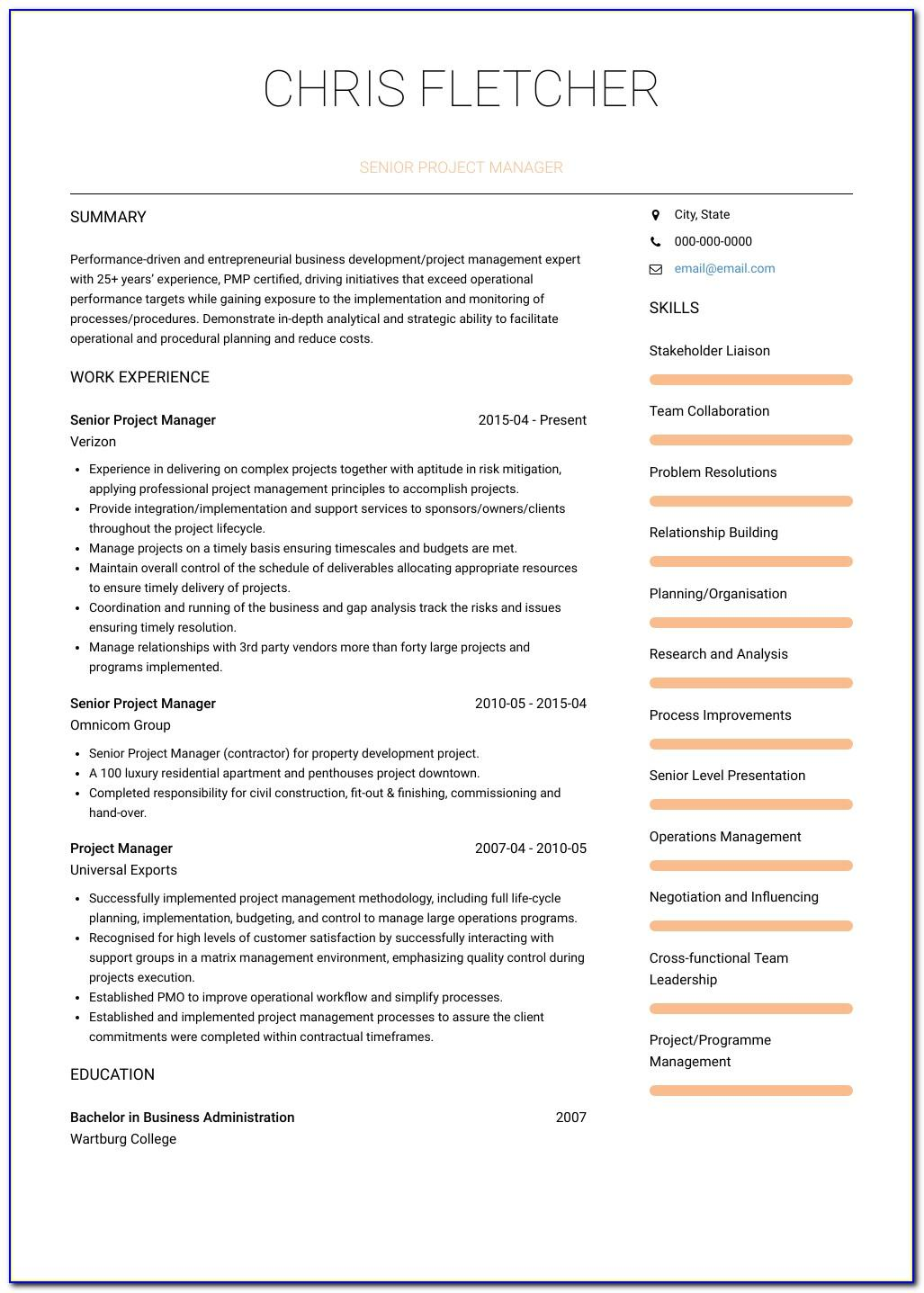 Project Manager Resume Template Download