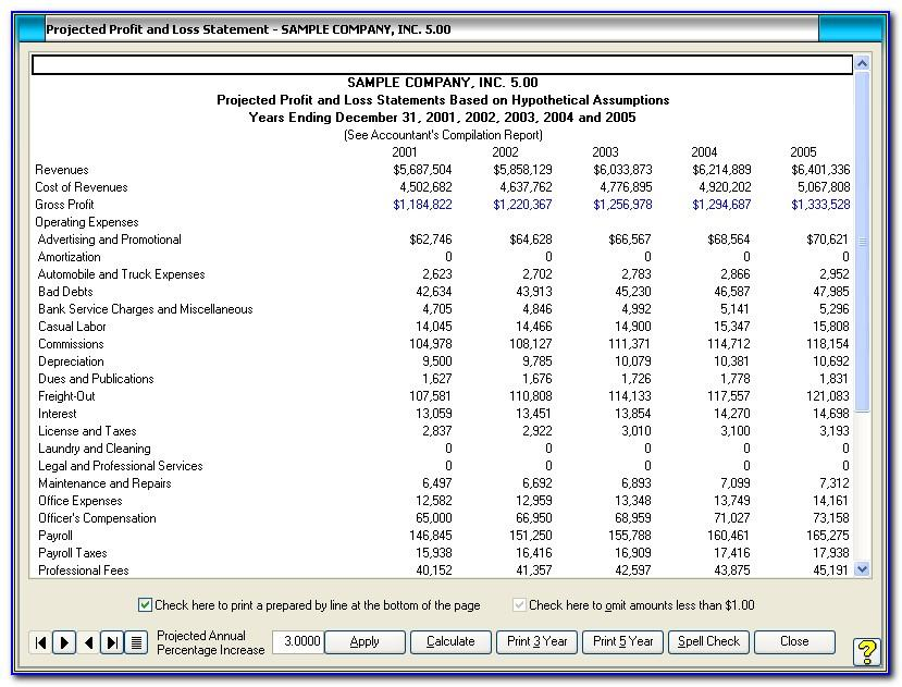 Projected Profit And Loss Statement Example