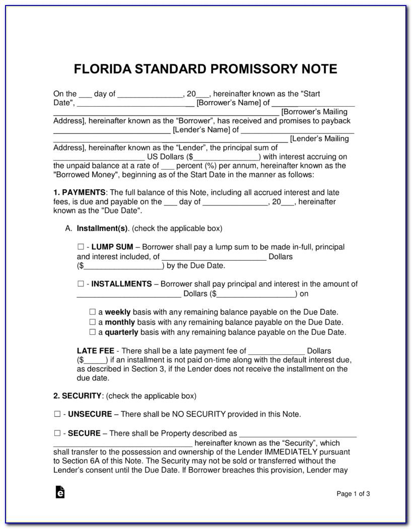 Promissory Note Form Florida