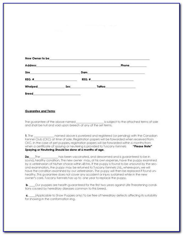 Punch Out List Template