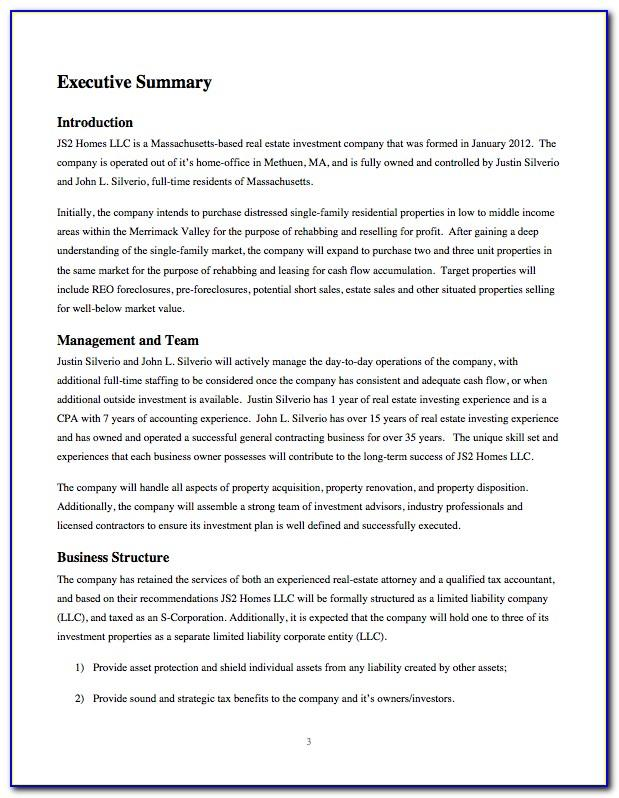 Real Estate Investment Company Business Plan Template