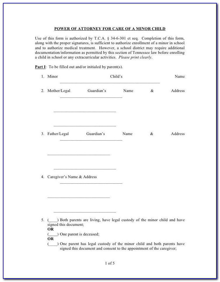 Florida Dmv Power Of Attorney Form 82053
