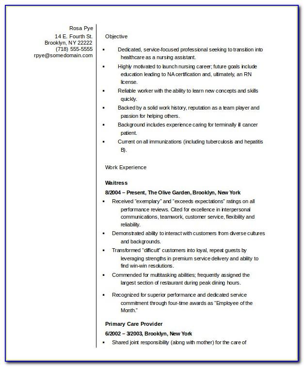 Nursing Assistant Resume Template Microsoft Word