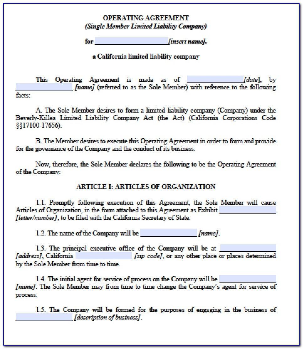Operating Agreement Llc Template Michigan