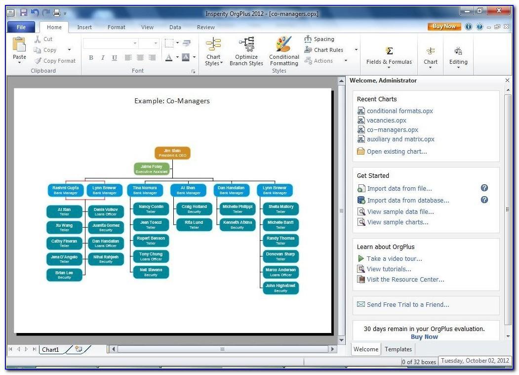Org Chart Template Microsoft Word 2010