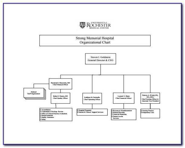 Organisation Chart Template Ppt