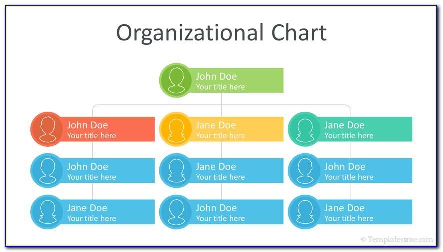 Organization Charts Templates Free