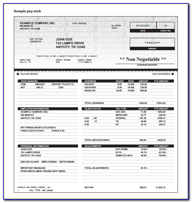 Pay Stub Earnings Statement Template