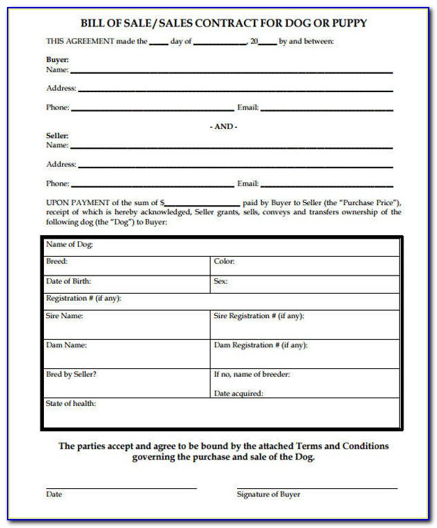 Pet Photography Contract Templates
