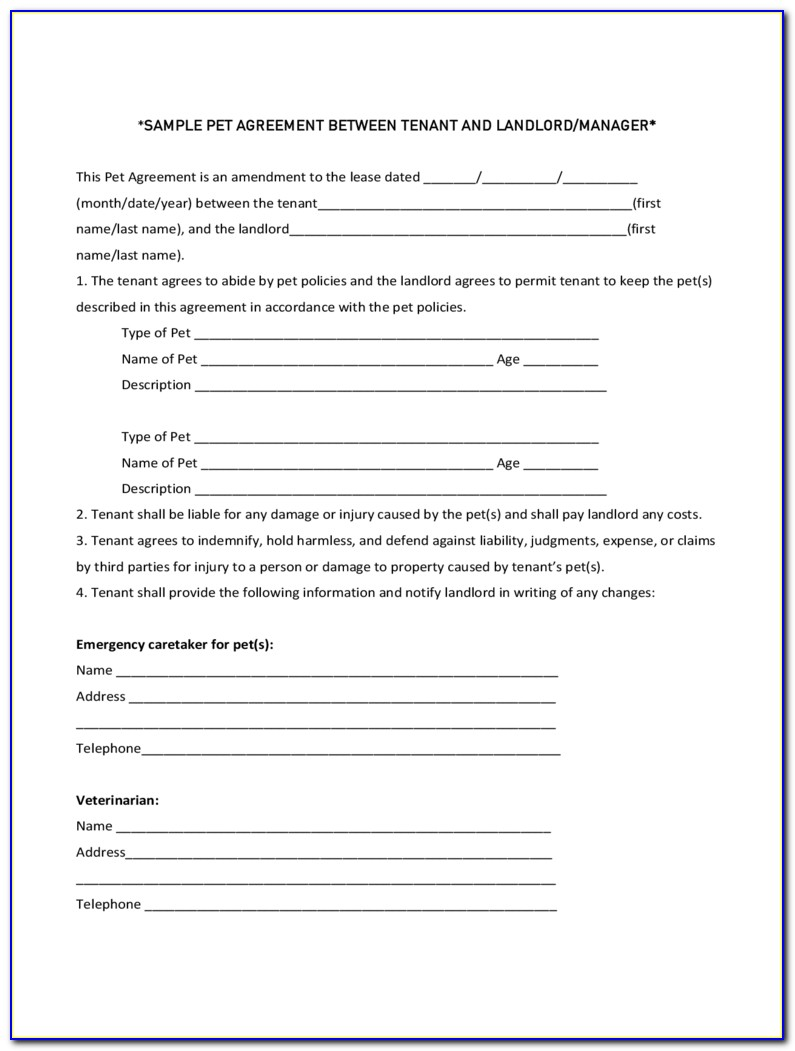 Pet Sitter Instructions Dog Template