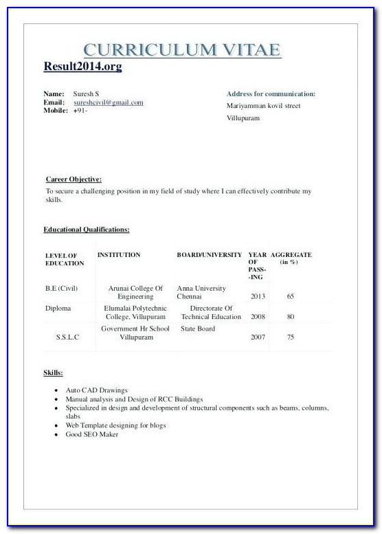 Pharmacist Resume Format Download