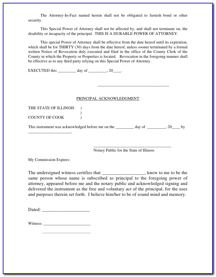 Power Of Attorney Form Florida For Child Care
