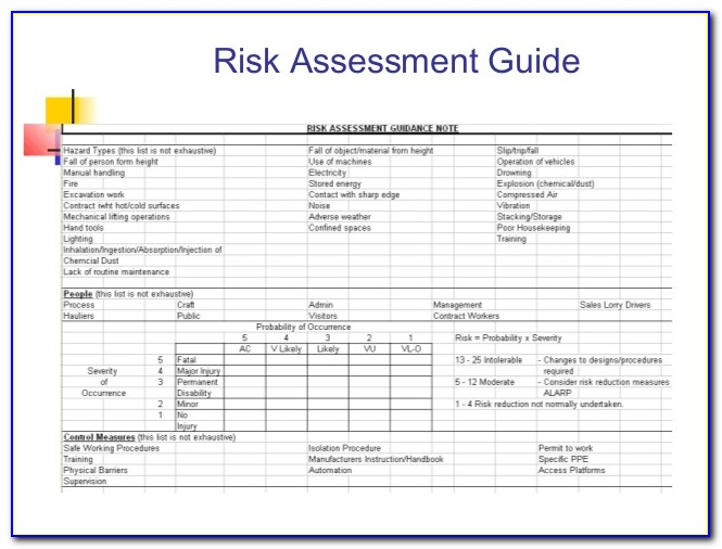 Sample Ohs Risk Assessment And Control Form