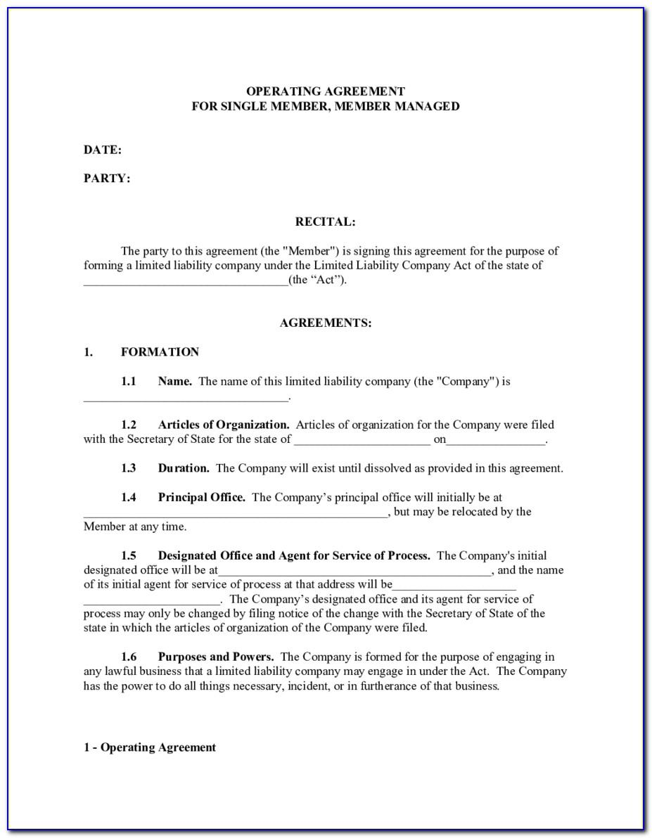 Series Llc Operating Agreement Template Texas