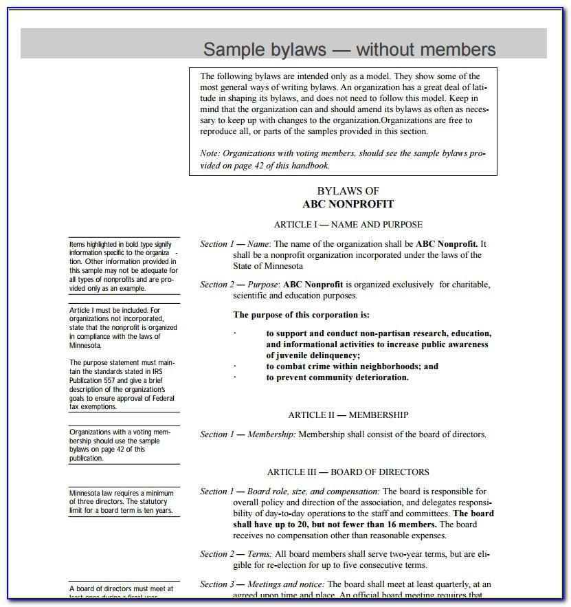 Examples Of Bylaws For A Nonprofit Organization