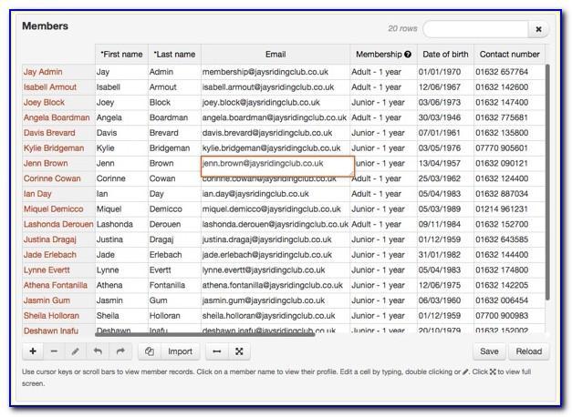 Microsoft Excel Customer Database Template