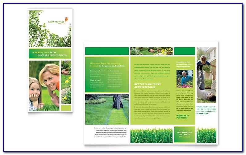 Microsoft Publisher Brochure Samples