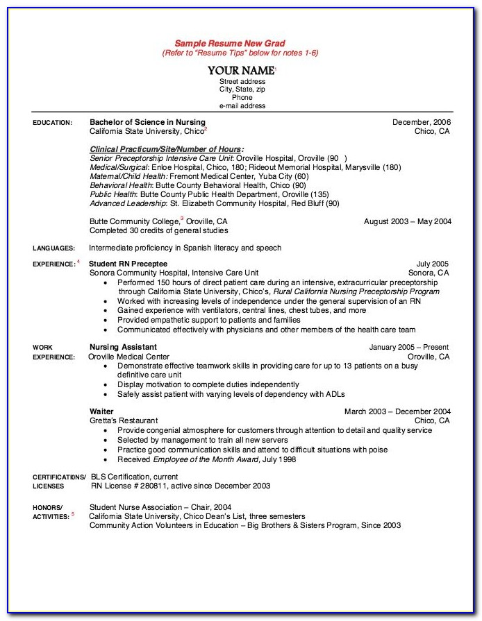 New Graduate Nurse Resume Sample
