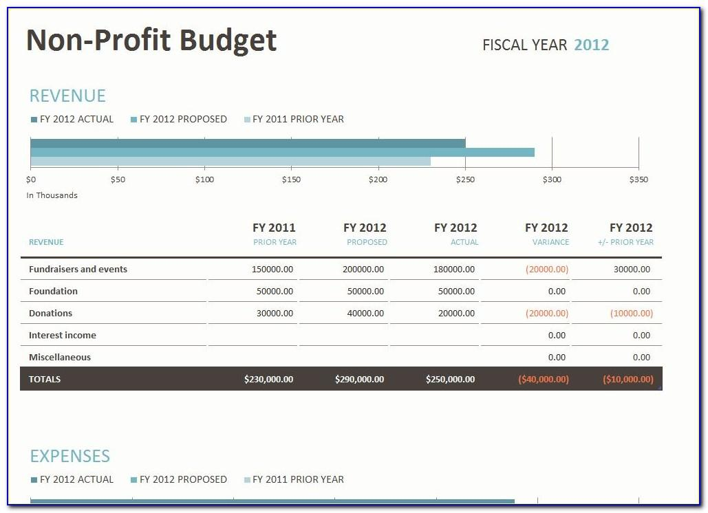 Non Profit Budget Templates