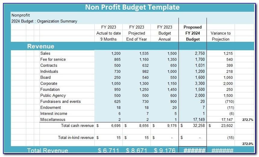 Nonprofit Press Release Example
