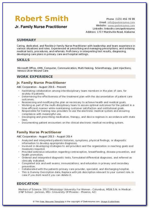 Nurse Practitioner Resume Examples